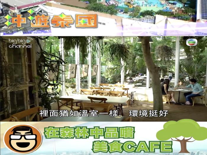 在森林中品嚐美食Cafe