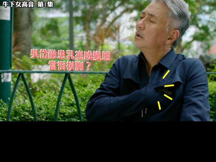 精華 吳岱融患乳癌成變態當街摸胸?