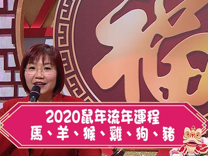 【2020鼠年流年運程】馬羊猴雞狗豬今年嘅運程又係點?