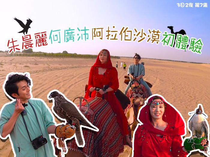 朱晨麗何廣沛阿拉伯沙漠體驗