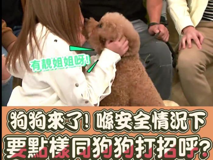 點同狗狗打招呼?