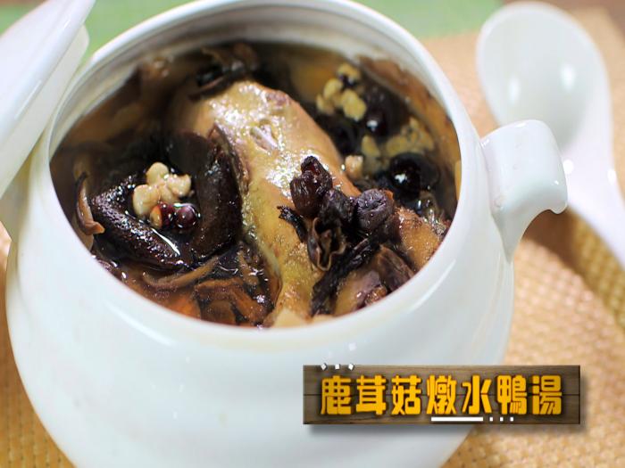 鹿茸菇燉水鴨湯