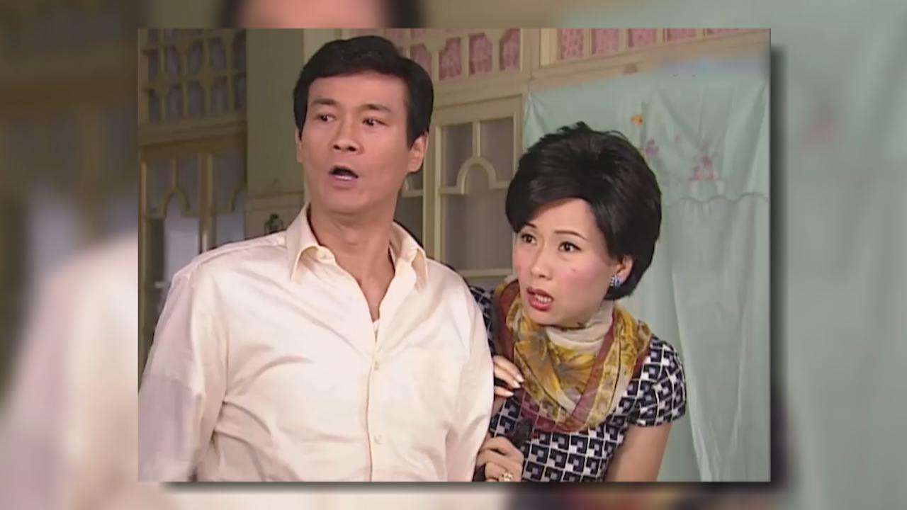 大寶藏鄭少秋葉童劇集
