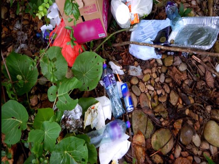 遊人冒名湧至_世外桃源綠蛋島慘變垃圾島