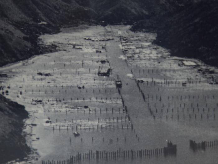 陰澳僅存浮水屋面臨清拆_與周星馳一起見證香港木材業興衰