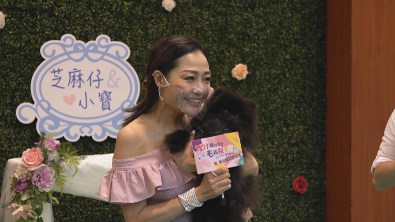 楊玉梅為愛犬舉行婚禮 搞笑學電視劇擺奶奶款