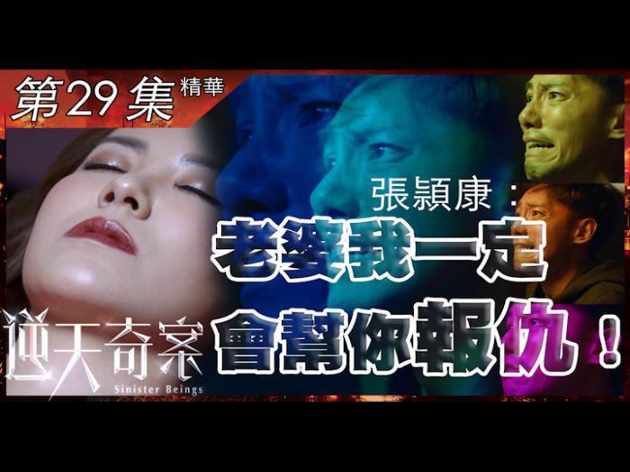 第29集加長版精華 張頴康:老婆我一定會幫你報仇!