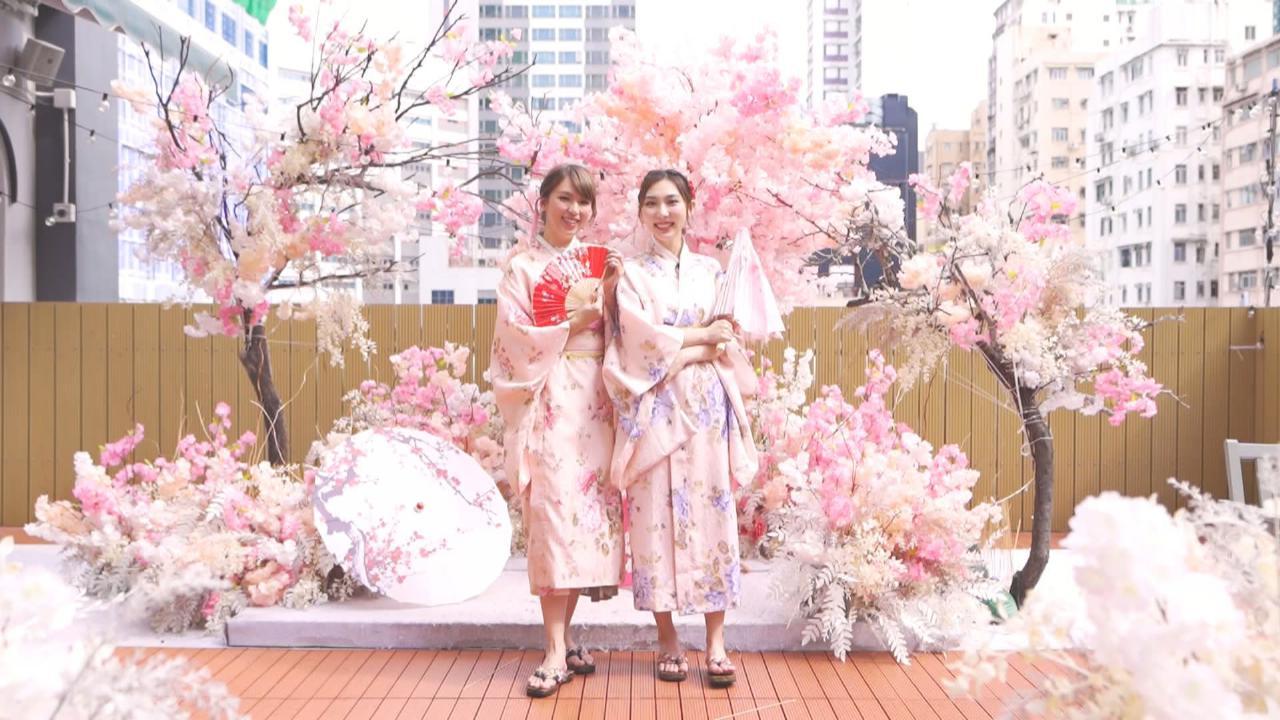 姊妹淘  - Girls Style 日本風食tea打卡