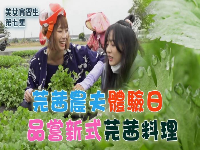 【美女實習生】芫茜農夫體驗日 品嘗新式芫茜料理