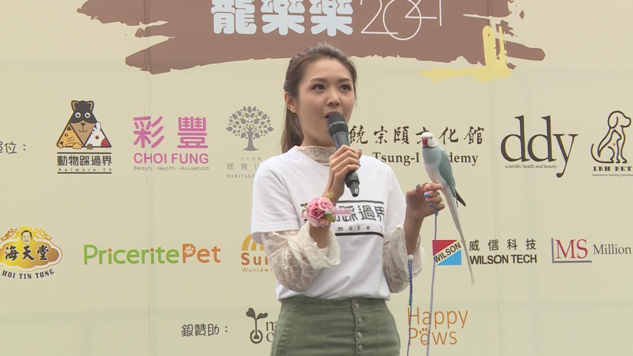 陳庭欣首次主辦寵物市集 帶鸚鵡ShabuShabu做生招牌